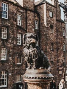 Greyfriars dog edinburgh